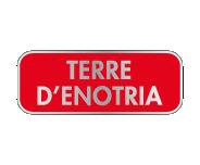 テッラ デェノトラ